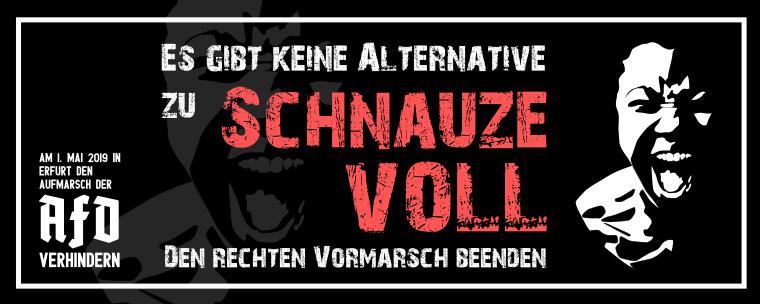 Schnauzevoll-Banner